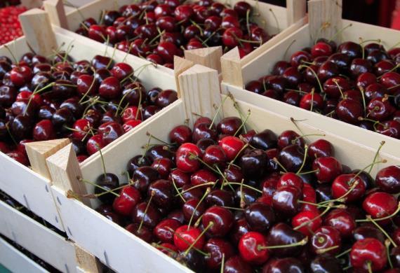 marché-aux-fruits-rouges-noyon
